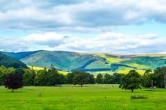英国风景在夏天 库存图片