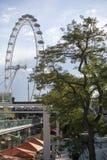 英国,伦敦,南银行,看伦敦眼睛的荚通过树 库存照片