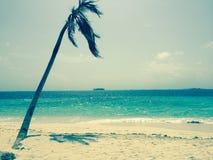 英国细致的空白海岛海岛掌上型计算机天堂沙子含沙唾液结构树绿松石处女的水 免版税库存图片