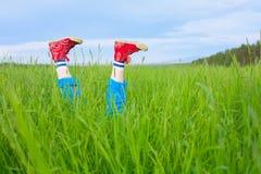 英尺体操饥饿的蚊子鞋子 免版税库存照片
