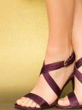英尺性感凉鞋的缎 库存图片