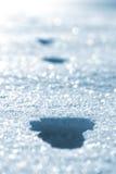 英尺打印雪 免版税库存照片