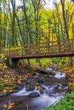 英尺桥梁交叉流在森林里 图库摄影
