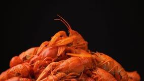英尺长度红色煮沸的小龙虾特写镜头在盘子转动 影视素材