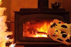英尺toasty的节假日 库存图片