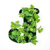 英语字母表的信件J从绿色植物叶子的  免版税库存图片