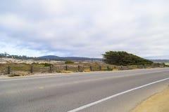 17英里在太平洋海岸,蒙特里,加利福尼亚的推进风景 免版税库存图片