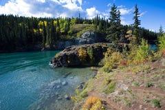 英里峡谷,育空河, Whitehorse,育空地区,加拿大 免版税库存图片