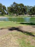 英里方形的公园 图库摄影