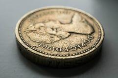 1英镑硬币 免版税库存照片