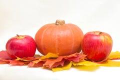 苹果、南瓜和叶子 免版税库存照片