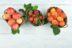 苹果、杏子和李子篮子在木背景 库存图片