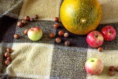 苹果、瓜和坚果在背景中 免版税图库摄影