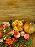 苹果、花楸浆果、南瓜和花在一个木地板上说谎 图库摄影