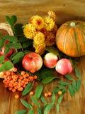 苹果、花楸浆果、南瓜和花在一个木地板上说谎 库存图片