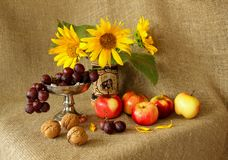 苹果、葡萄、向日葵和坚果在粗麻布背景 免版税图库摄影