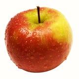 苹果包括的路径雨珠红色w黄色 免版税图库摄影