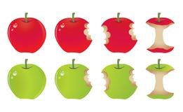 苹果叮咬 库存图片