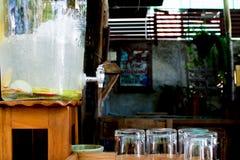 苹果可口刷新的饮料在咖啡馆,被灌输的水结果实 免版税库存照片