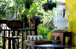 苹果可口刷新的饮料在咖啡馆,被灌输的水结果实 免版税库存图片