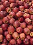 苹果可口红色 免版税图库摄影