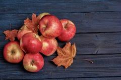 苹果和叶子在蓝色黑暗的木背景 库存照片