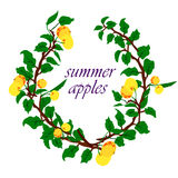 苹果和叶子的传染媒介例证 库存照片