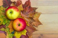 苹果和叶子 免版税库存图片