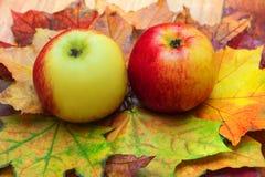 苹果和叶子 图库摄影
