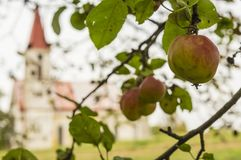 苹果和教会 免版税库存照片