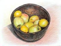 苹果和柠檬在白色背景隔绝的碗手拉在色的铅笔 免版税库存照片