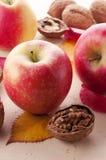 苹果和核桃 免版税库存照片
