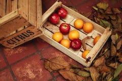 苹果和桔子在木箱子有秋天的生叶 库存照片