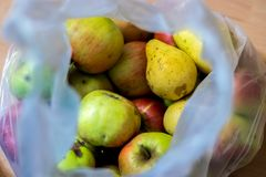 苹果和梨在塑料袋 免版税库存照片