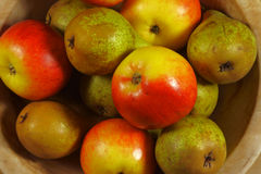 苹果和梨 库存照片