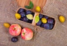 苹果和篮子用李子 库存图片