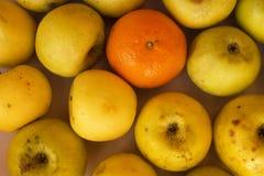 苹果和蜜桔 库存照片