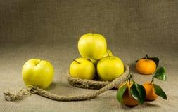 苹果和蜜桔 免版税图库摄影