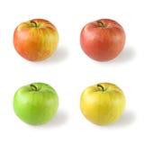 苹果四 库存图片