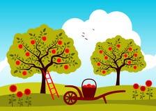 苹果园结构树 免版税库存照片
