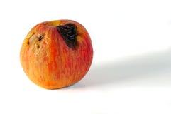 苹果坏一 免版税库存图片