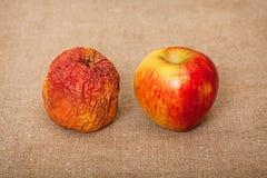苹果坏画布果子好二 免版税库存照片