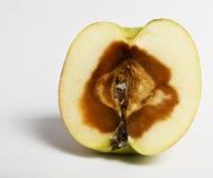 苹果坏 库存图片