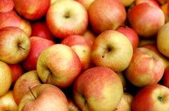 苹果堆 免版税库存图片