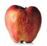 苹果大红色弄湿了 库存照片