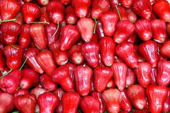 苹果大量玫瑰色泰国 库存照片
