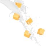 苹果奶油色部分杉木飞溅 免版税库存照片