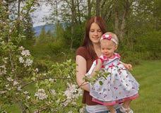 苹果婴孩开花测试母亲 免版税库存照片