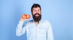 苹果抗氧剂配制负责任的保健福利 营养选择 在世界的苹果普遍的类型果子 人 免版税库存图片