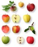苹果收集 库存图片